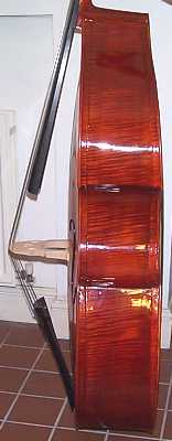 double bass ribs